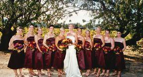 Tmx 1537382209 186ec9dd8a364f5e 1537382208 52a2b0d64c4aa872 1537382163883 17 Knot16 San Diego, California wedding beauty