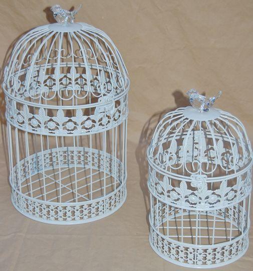 Cage rentals
