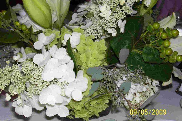 Tmx 1257749585184 LebanonCoopFlorist Nashua wedding officiant