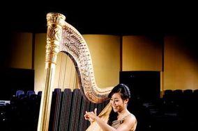 Modern Harp: Lily