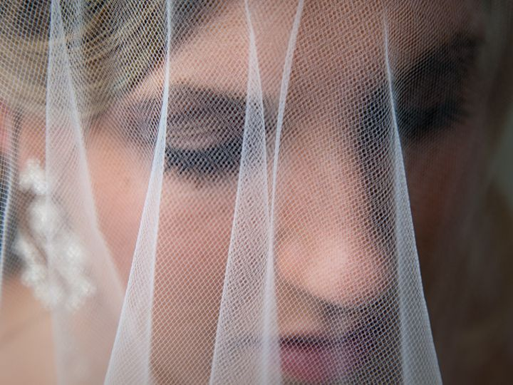 Tmx 1452180601513 Img5057 Brownstown wedding videography