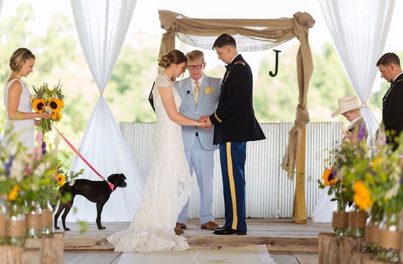 800x800 1507159255767 dogs in wedding 3