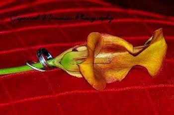 flowerwring