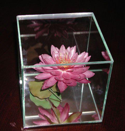 GlassBox2karen