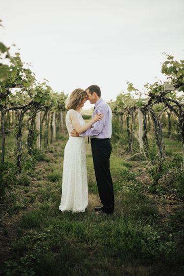 Newly wed vineyard photo