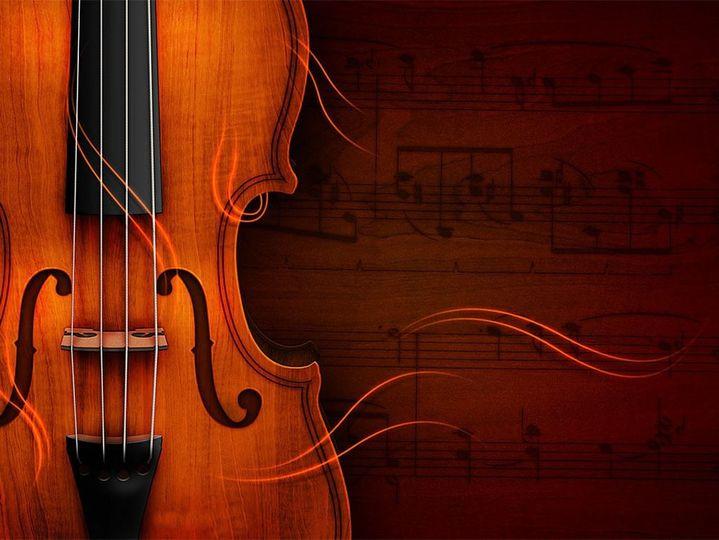 feel the music violi
