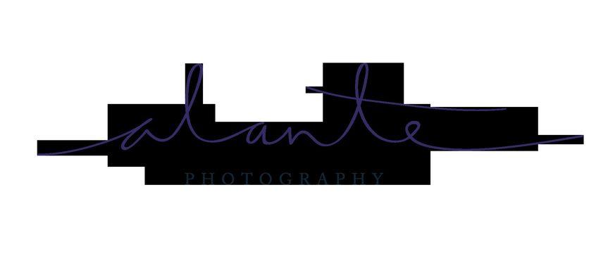 alante log