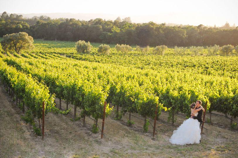 Vineyard wedding Richard Wood Photo