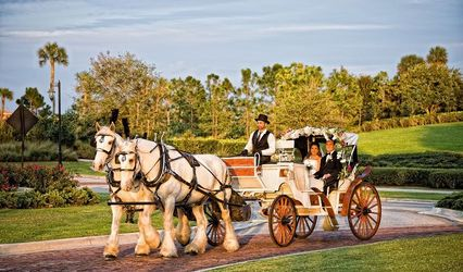 Horse and Carriage Rides and Events
