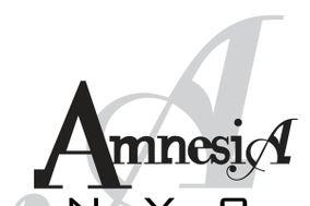 Amnesia NYC