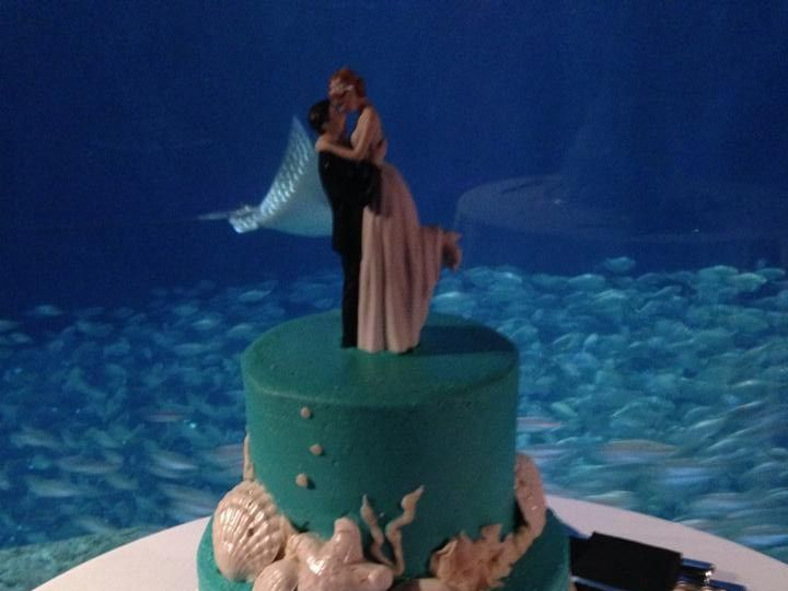 Tmx 1424188767183 Wedding Cake 15 Palm Harbor, Florida wedding cake