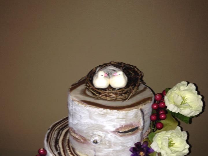 Tmx 1436101520088 Birch Tree Cake Palm Harbor, Florida wedding cake