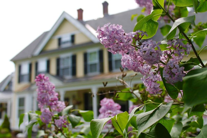 Inn with spring lilac