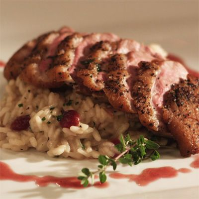 Tmx 1536683824 61cc0c365af81d78 1536683823 E773e44f71c90799 1536683841368 4 Pan Seared Duck Br Newburgh, NY wedding catering