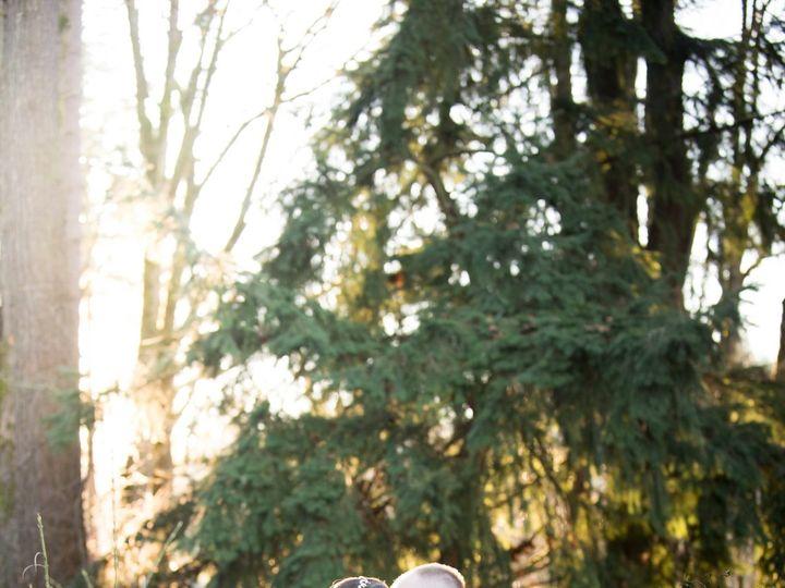Tmx 1515772436 Fcb8788c2c91d0fd 1515772432 C7f2b6c9c9f8811e 1515772431374 4 Theron And Ronni W Kirkland, WA wedding photography