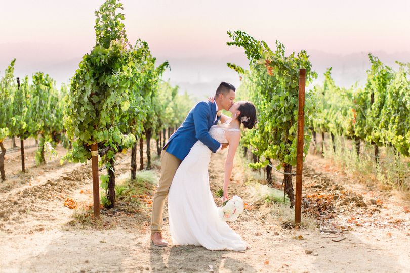 Kiss in the vineyard