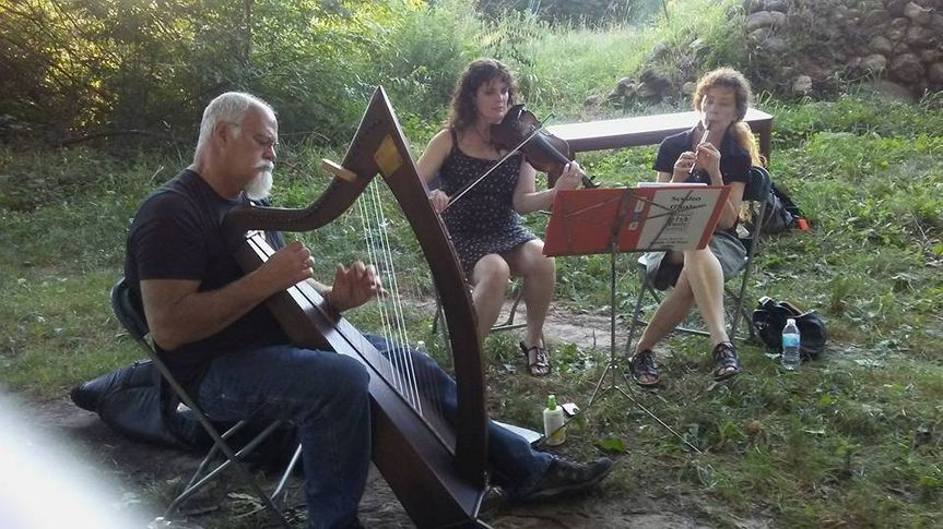 Casual Celtic Musicians (or in formal dress, as you like) are available. Here is one possible...