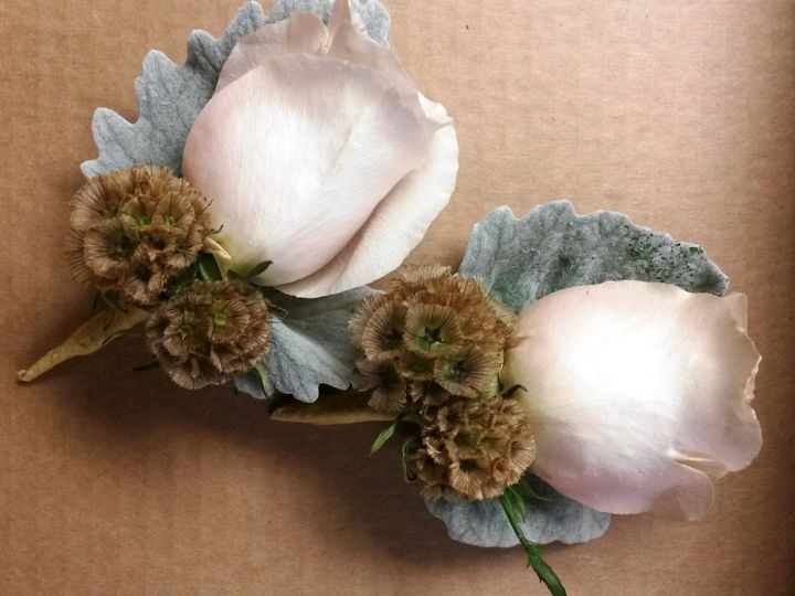 Tmx 1424378326963 White Rose Scabosia Pods Fraser, MI wedding florist