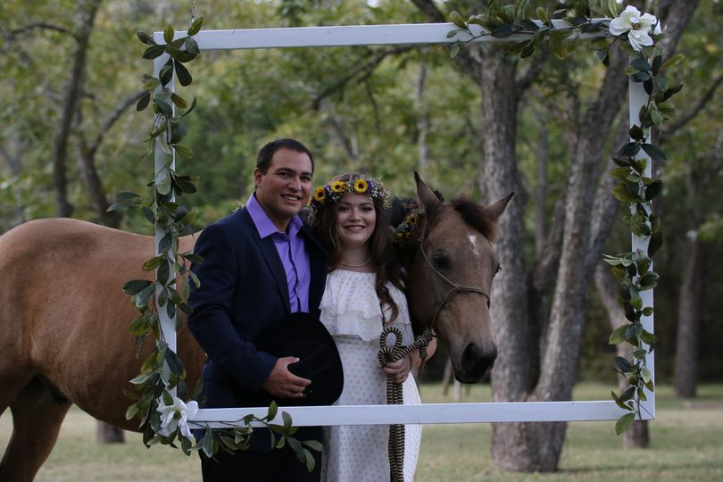 Newlyweds and the horse