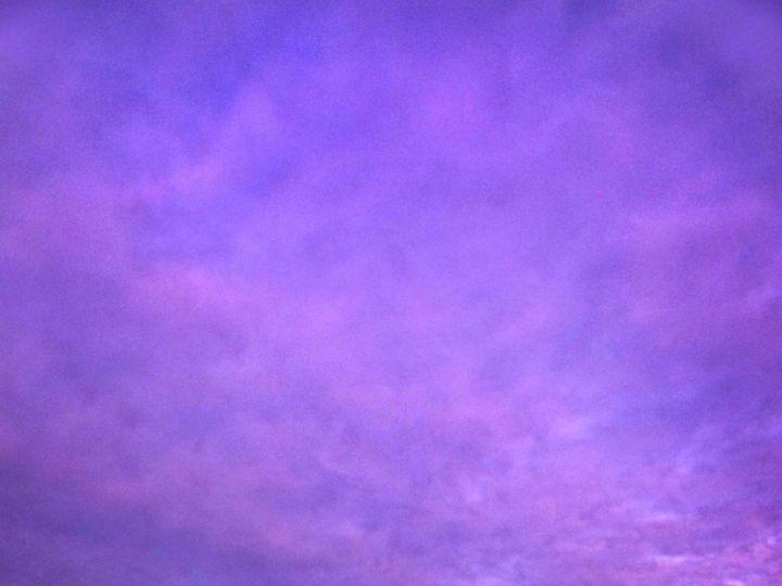 Tmx 55 Bride Groom Wedding Sunset Purple Sky 51 3130 158989741883602 Garden City, NY wedding photography