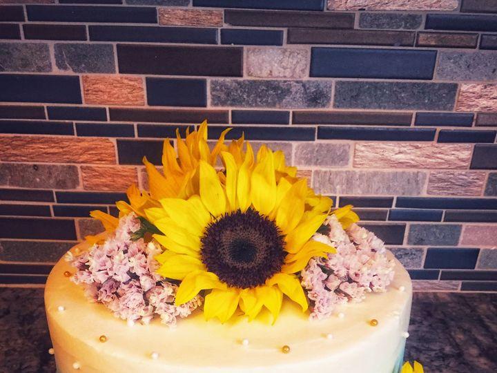 Tmx Img 4598 51 1003130 Tampa, FL wedding cake