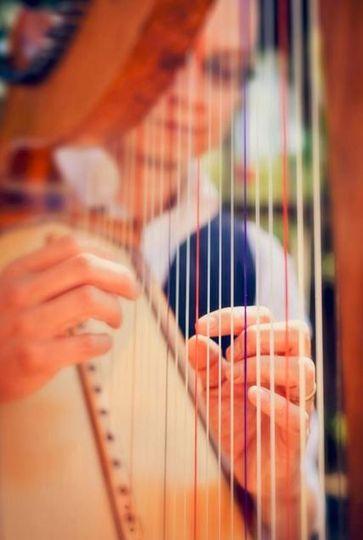 Rick Tan Harp Aspen Greenbelt Elopement, Davis Artisan Wedding Photography