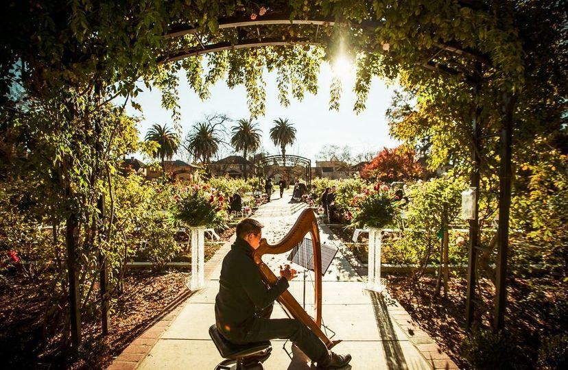 Rick Tan Harp McKinley Rose Garden, Sacramento Sees The Day Photography
