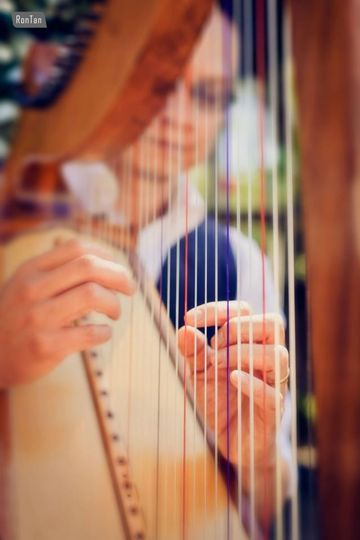 rick harp