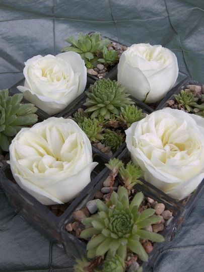 White Antique Roses and Succulents in glass cubes doubling as table centerpieces and parting gifts