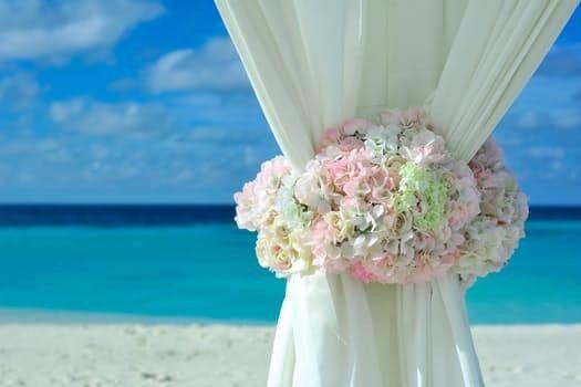 Tmx 1498842890627 Wedding Hydrangas East Orange, NJ wedding planner