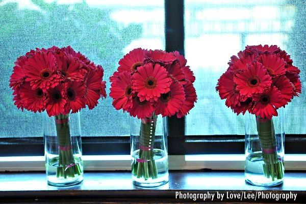 Tmx 1220477054254 GerberDaisies2 Lewisville wedding florist
