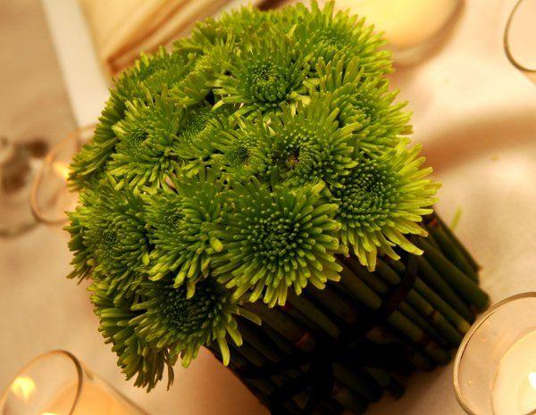 Tmx 1220478044582 IMG 9542R Lewisville wedding florist