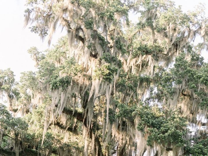 Tmx Charleston Wedding Planner Magnolia Plantation Wedding Stephanie Ashley 0015 51 445630 159398330748632 Noblesville, IN wedding planner