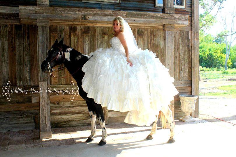 Bride riding horse