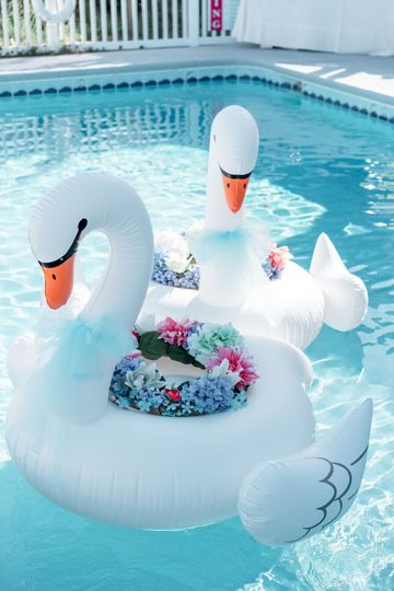 All Decked Out pool swans