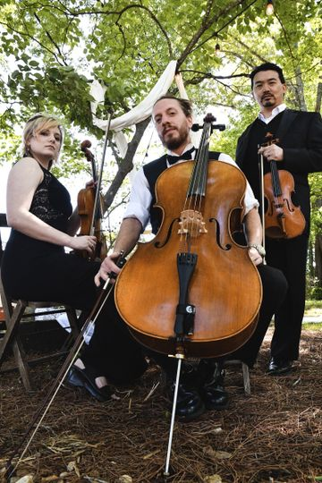 The string trio