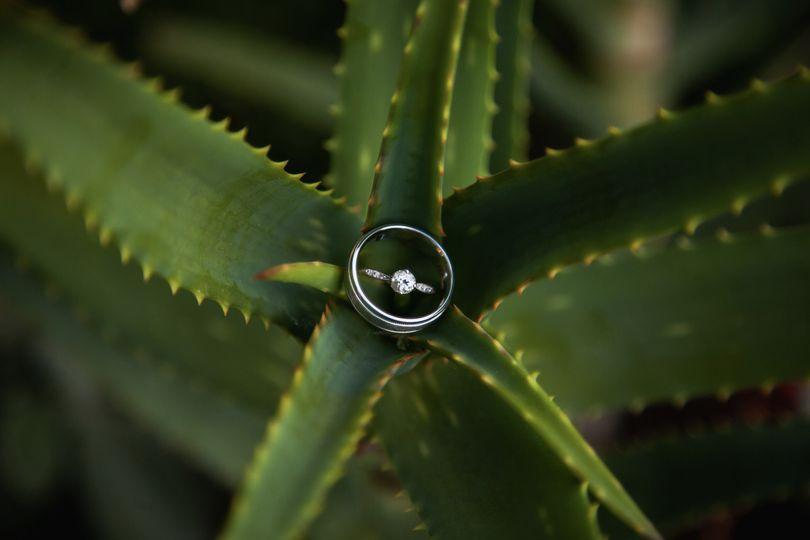 Wedding ring - Trevor Ritsema Photography