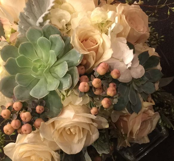 Roses and succulents