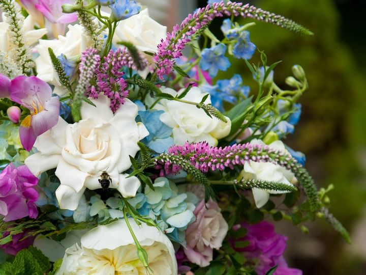Tmx 1358624789357 BLUE21 East Aurora, New York wedding florist