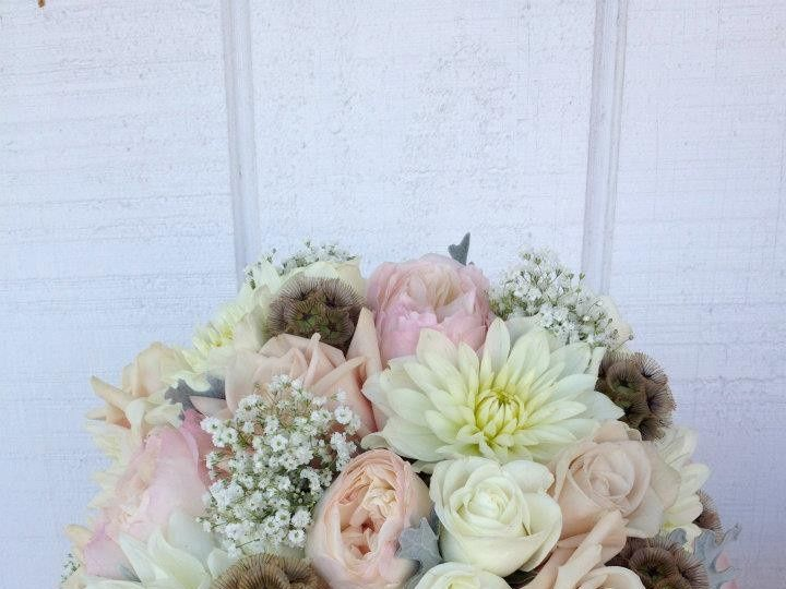 Tmx 1382989946162 578741432653706777263526442974 Grand Rapids wedding florist