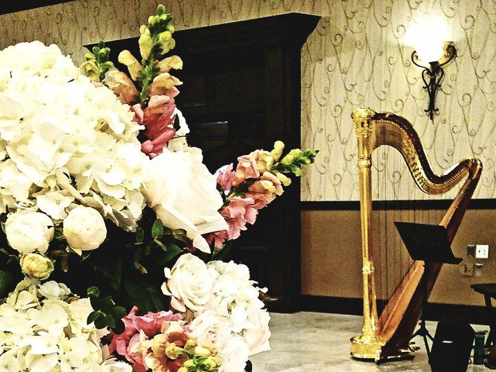 Tmx Club Venetian Tim And Michelle Harp 6 51 692240 1557856685 West Bloomfield, Michigan wedding ceremonymusic