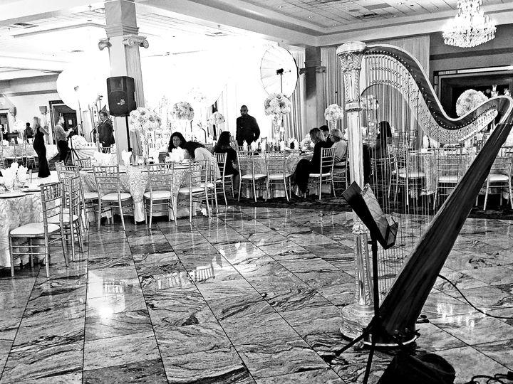 Tmx Desiree And Shadi Harp 1 51 692240 West Bloomfield, Michigan wedding ceremonymusic
