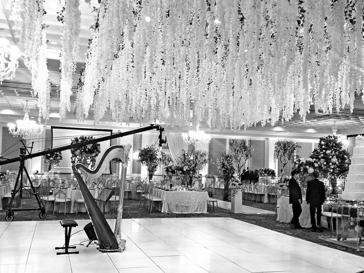 Tmx Jacky And Tony Harp 9 51 692240 West Bloomfield, Michigan wedding ceremonymusic