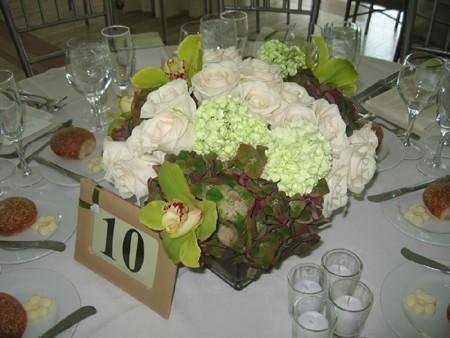 Tmx 1236776726361 L 6154749ab3867b731c508d088438fc5c Massapequa Park wedding planner