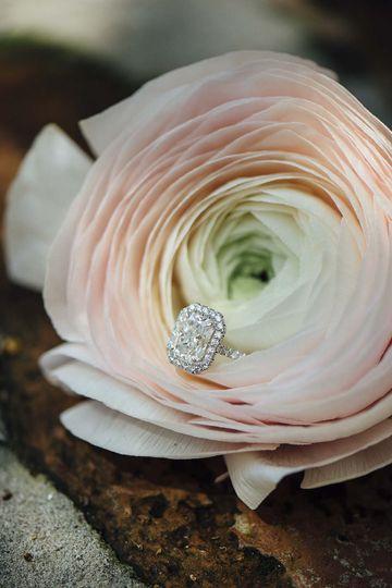 catherine claire il mercato new orleans weddingon
