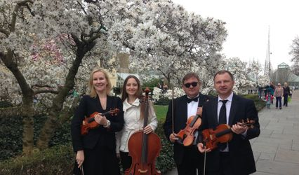 Harmonia Strings