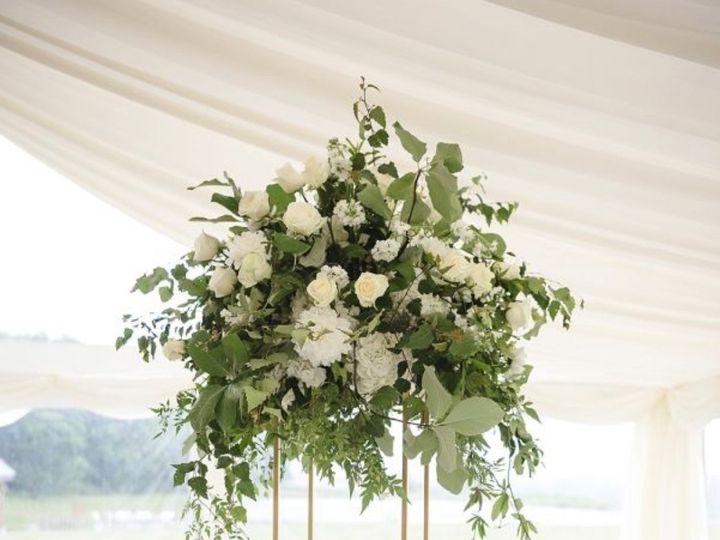 Tmx Img 6710 51 996340 1560201341 Tampa, FL wedding florist