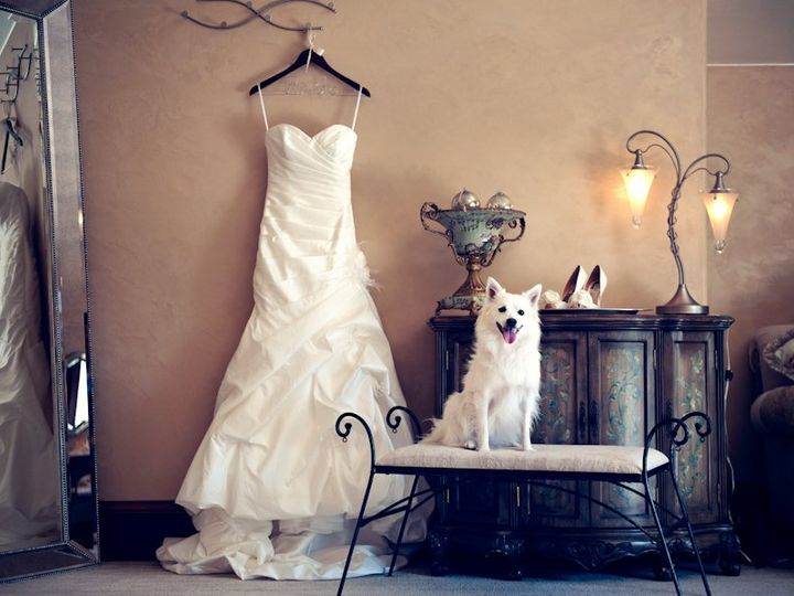 Tmx 1348002702077 DressandDog Castle Rock, Colorado wedding venue