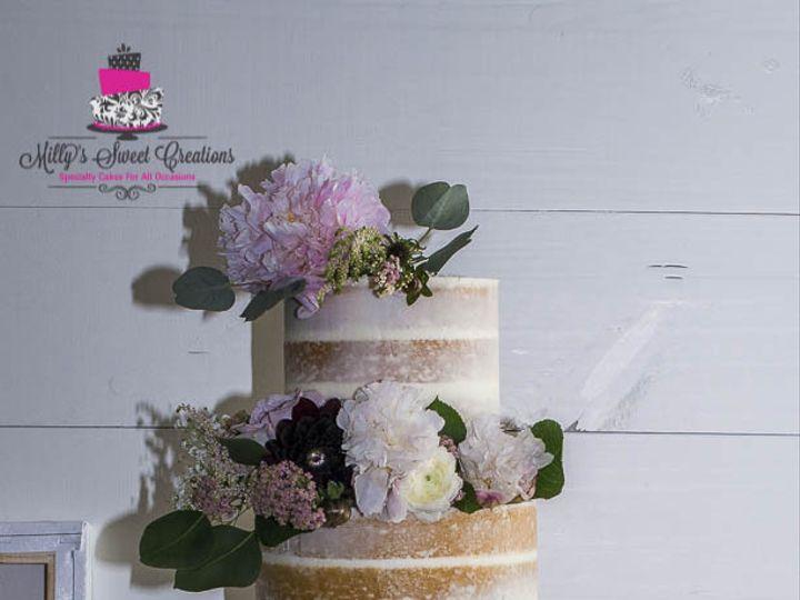Tmx 1478397460806 Semi Naked Wedding Cake With Fresh Flowers 002 Cleburne, Texas wedding cake