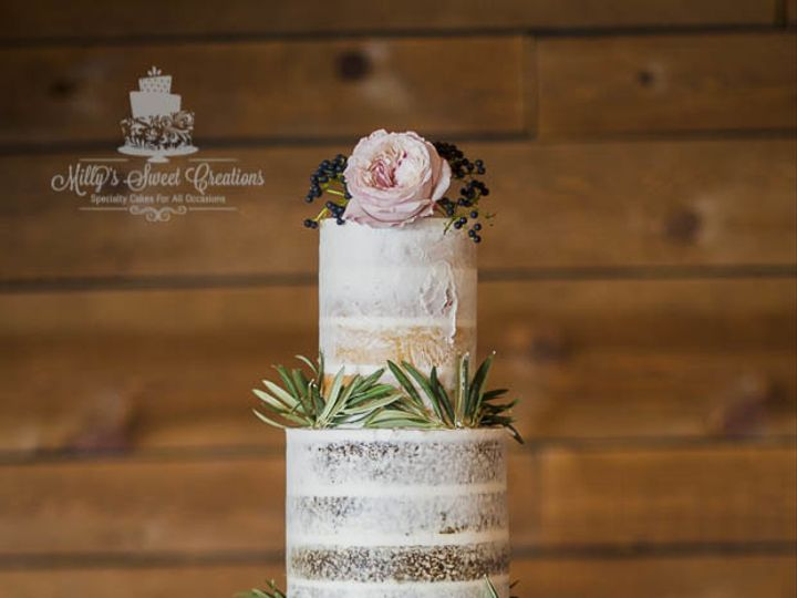 Tmx 1508714223333 Semi Naked Wedding Cake With Different Flavor Cake Cleburne, Texas wedding cake